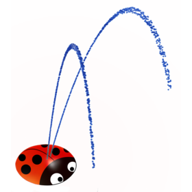 Wacky Water Whiz Lady Bug